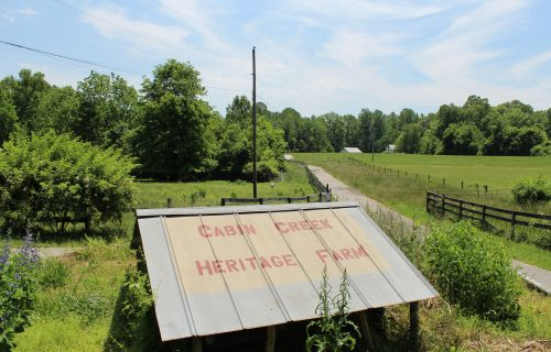 Video: Cabin Creek Heritage Farm