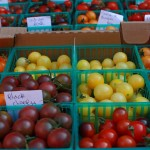 Farm Bill Provides Opportunity for Increased U.S. Organic Production