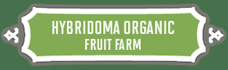 Hybridoma