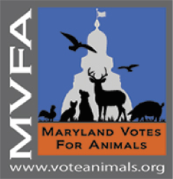Maryland Votes for Animals