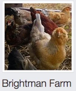 brightmanfarm