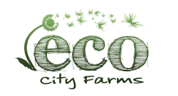 ecoffshoots.org