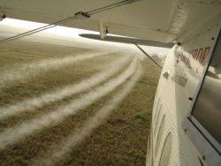 Airplane Spraying Wheat Crops