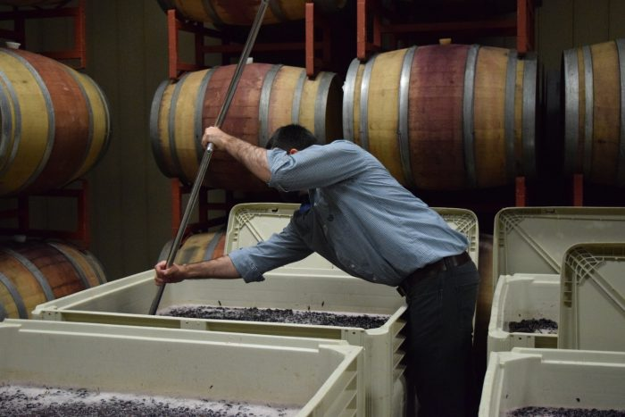 Wine making at Rocklands Farm
