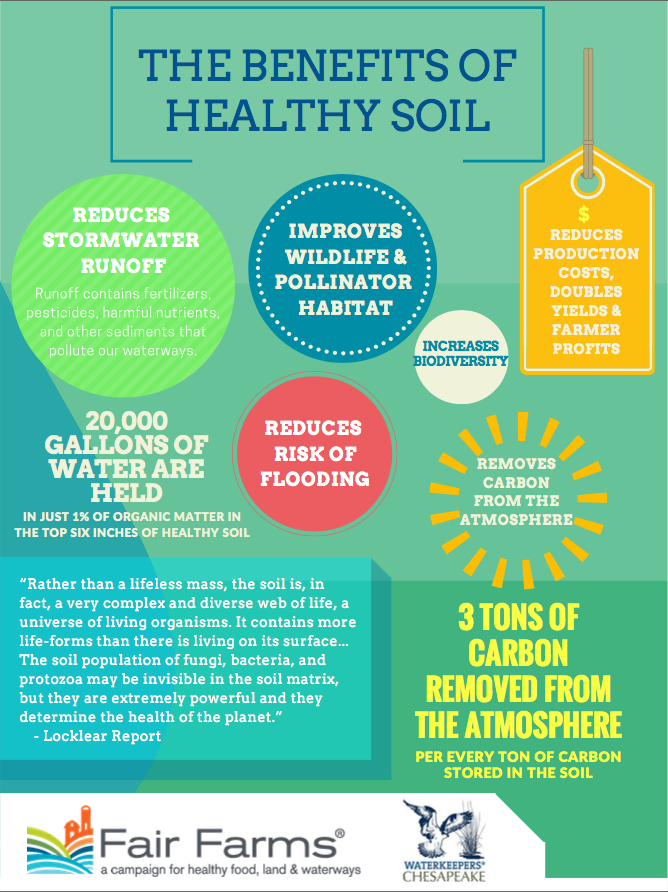 Benefits of Healthy Soil Infographic