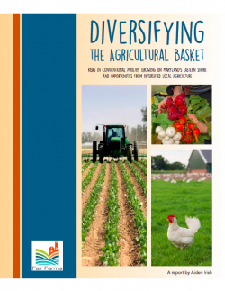 Diversifying the Agricultural Basket Report Cover