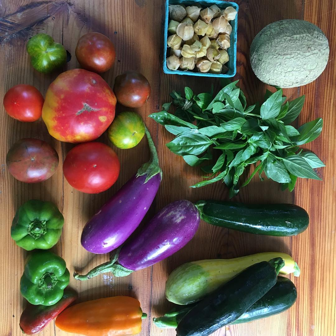 Owls Nest Farm CSA