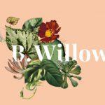 B.Willow