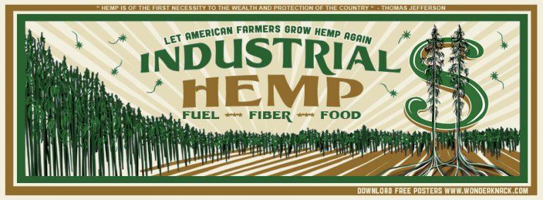 Let American Farmers Grow Hemp