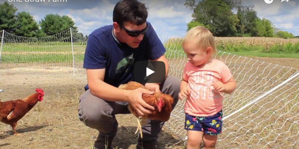 Video: One Straw Farm