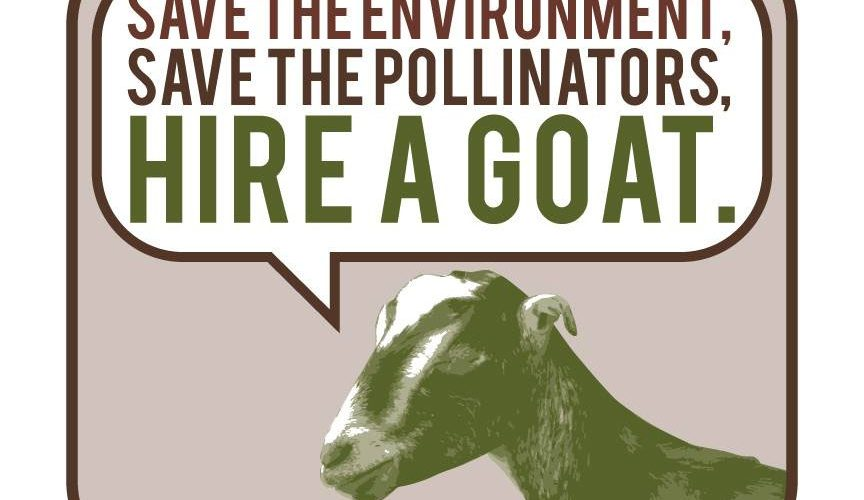 "Browsing Green Goats: ""Spraying isn't Cool"""