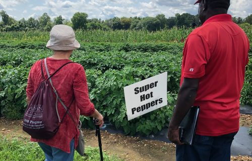 UMES Bus Tour: Exploring Small Farms through New Jersey and Delaware