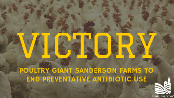 VICTORY: Poultry Giant Sanderson Farms Quits Antibiotics Habit