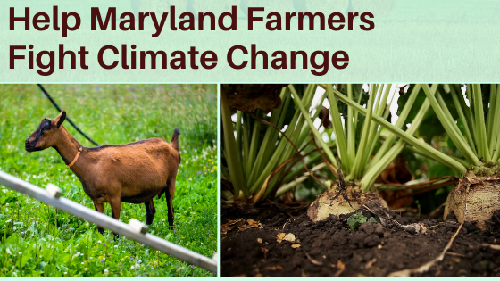 Help Maryland Farmers Fight Climate Change