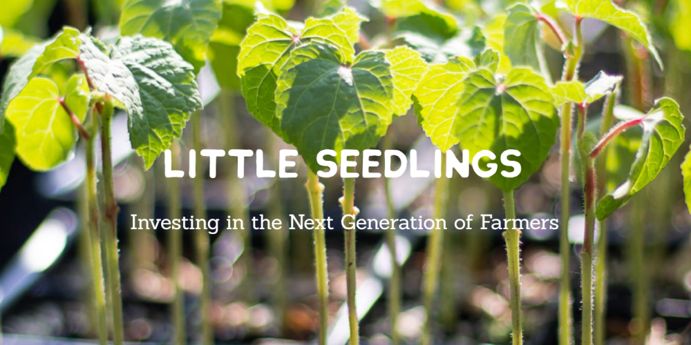 Media Alert: Little Sesame Launches Second Annual Little Seedlings Initiative