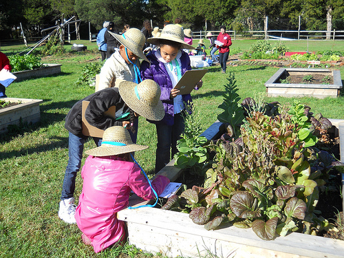 Partner Spotlight: Arcadia Center for Sustainable Food and Agriculture